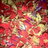 فروش انواع گل خشک ساناز، محمدی، مینا و الیزابت