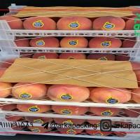 قیمت فروش لیبل میوه سوپرلوکس